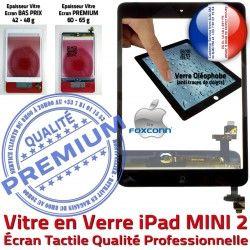 MINI Vitre Ecran Oléophobe Verre iPad Noir Mini2 Réparation Filtre Tactile Home Fixation Bouton N Caméra Tablette Adhésif A1489 2 Monté Nappe A1491 A1490