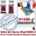 iPad Mini2 A1490 Blanc Home Oléophobe Fixation Adhésif Réparation Tactile Filtre Verre Caméra Vitre Tablette Nappe Ecran Bouton Monté